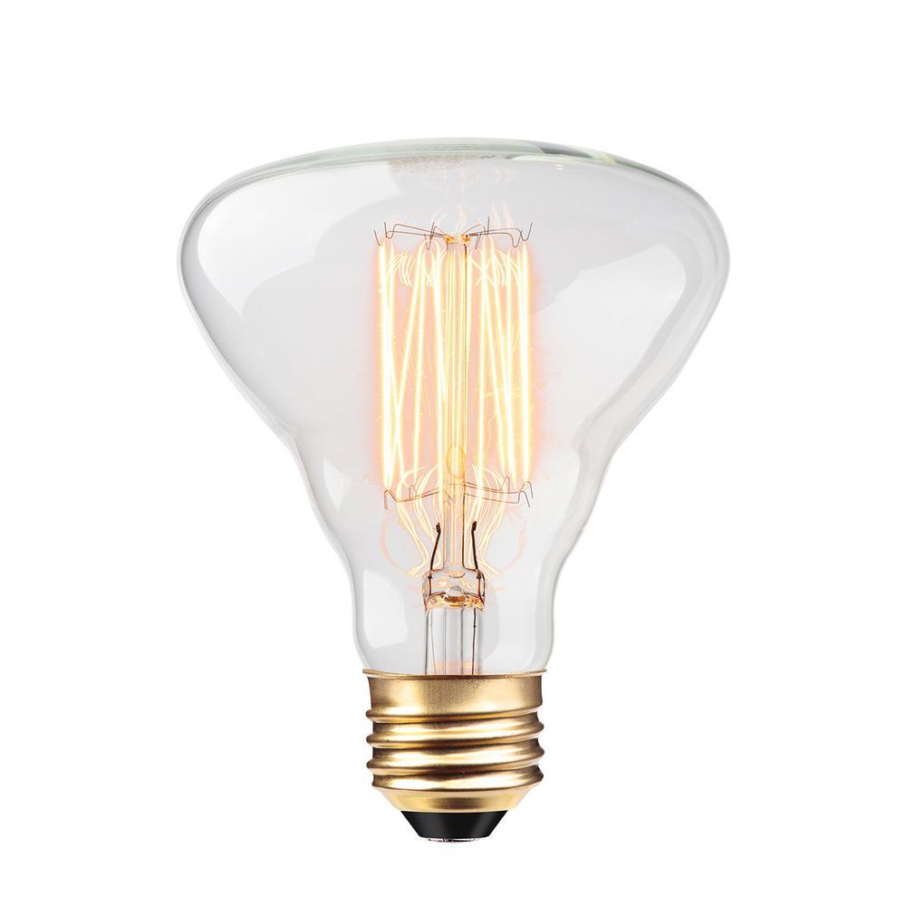 G40 Light Bulbs Lighting The Home Depot