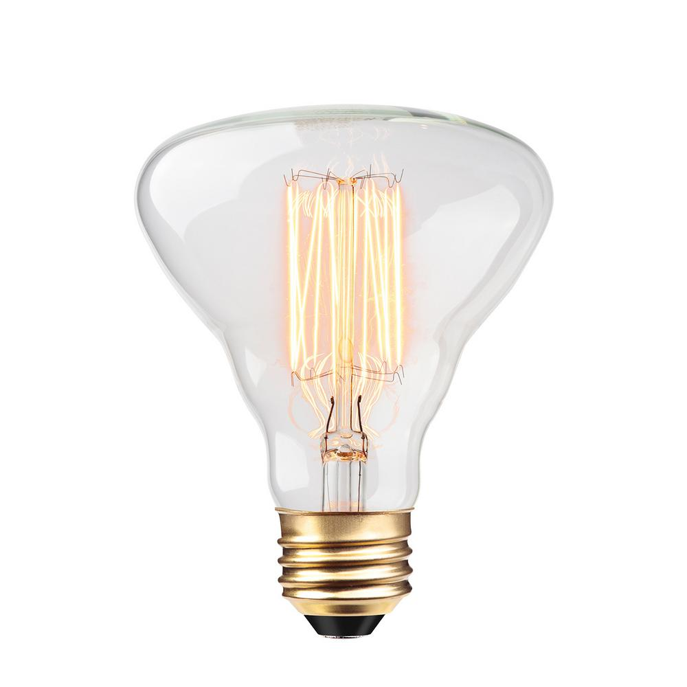 Globe Electric Vintage 60 Watt Incandescent S60 Antique Style Light Bulb Vintage Style Light