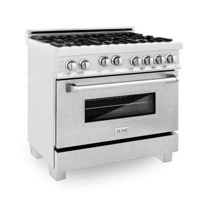 36 in. 4.6 cu. ft. Single Oven Gas Range with Convection Oven in DuraSnow Stainless Steel