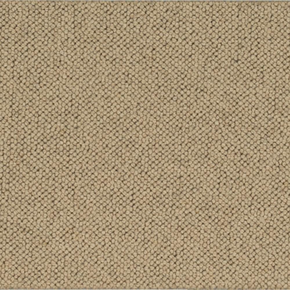 Carpet Sample - Ellsbury - Color Harvest Loop 8 in. x 8 in.