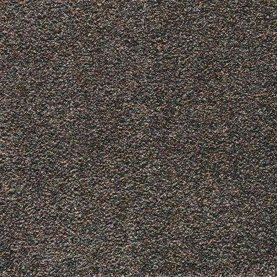Carpet Sample - Playful Moments I Multi - Color Night Phantom Texture 8 in. x 8 in.