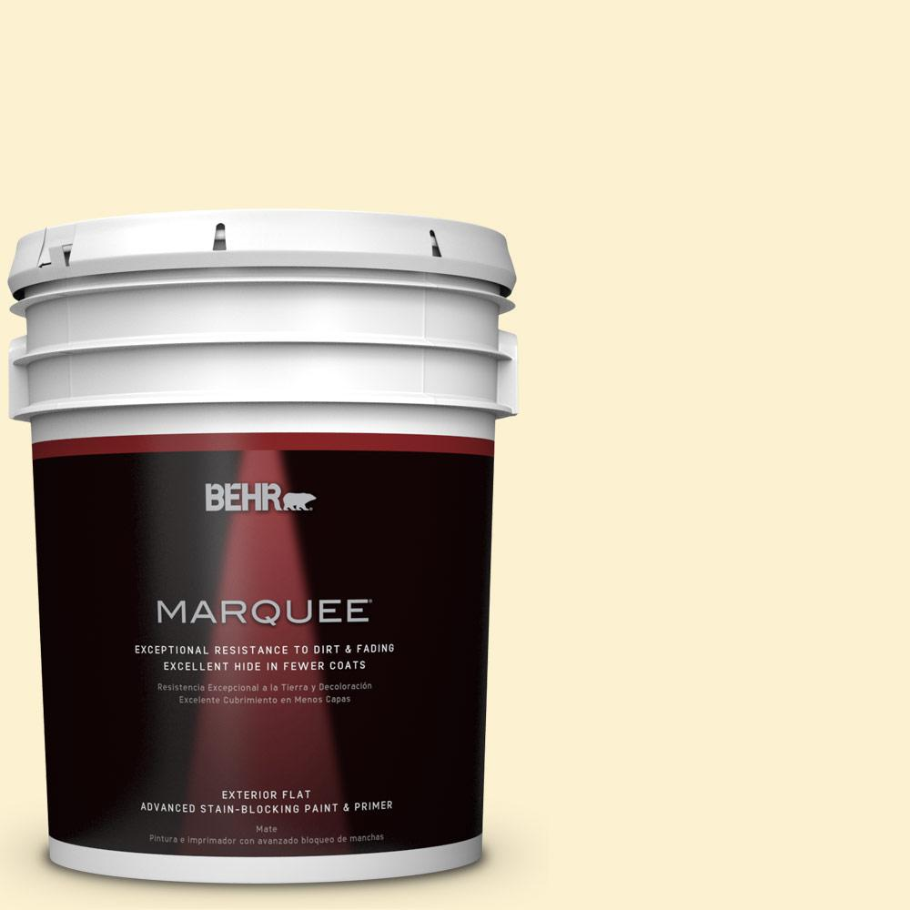 BEHR MARQUEE 5-gal. #P280-1 Summer Bliss Flat Exterior Paint