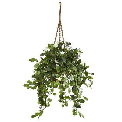 Indoor Stephanotis Flowering Artificial Plant in Hanging Basket