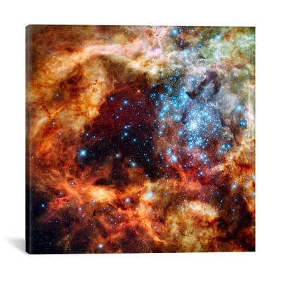 """""""R136 Star Cluster (Hubble Space Telescope)"""" by NASA Canvas Wall Art"""