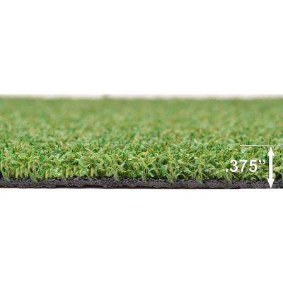 12 ft. x 75 ft. TruGrass Luxury Spring Indoor/Outdoor Green Artificial Turf