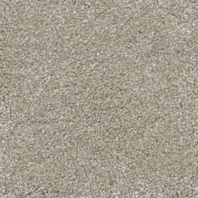 Fast Performer - Color Hallet Texture 12 ft. Carpet