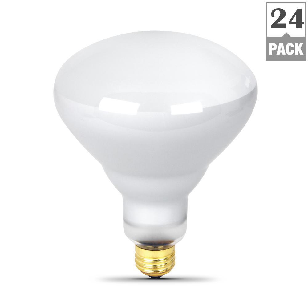 300-Watt 130-Volt R40 Incandescent Pool and Spa Flood Light Bulb (24-Pack)