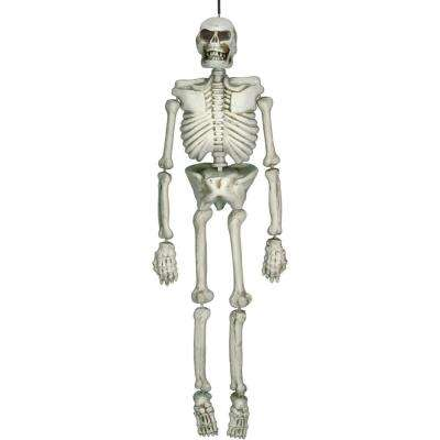 54 in. Halloween Life Size Skeleton