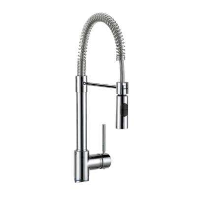 Industrial Chic Single-Handle Standard Kitchen Faucet with Dual Sprayer in Chrome