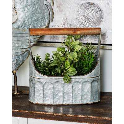 Silver Iron Garden Caddies with Beige Wooden Handles (Set of 2)