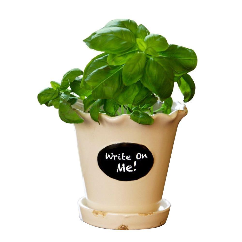 Pennington 5.5 in. Whitecap Ceramic Chalkboard Herb Pot