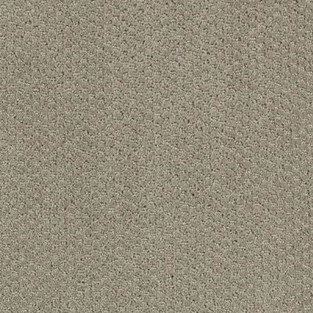 Carpet Sample - Katama II - Color Overcast Pattern 8 in. x 8 in.