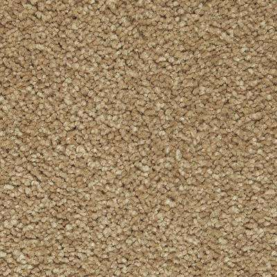 Carpet Sample - Castle II - Color Earth Textured 8 in. x 8 in.