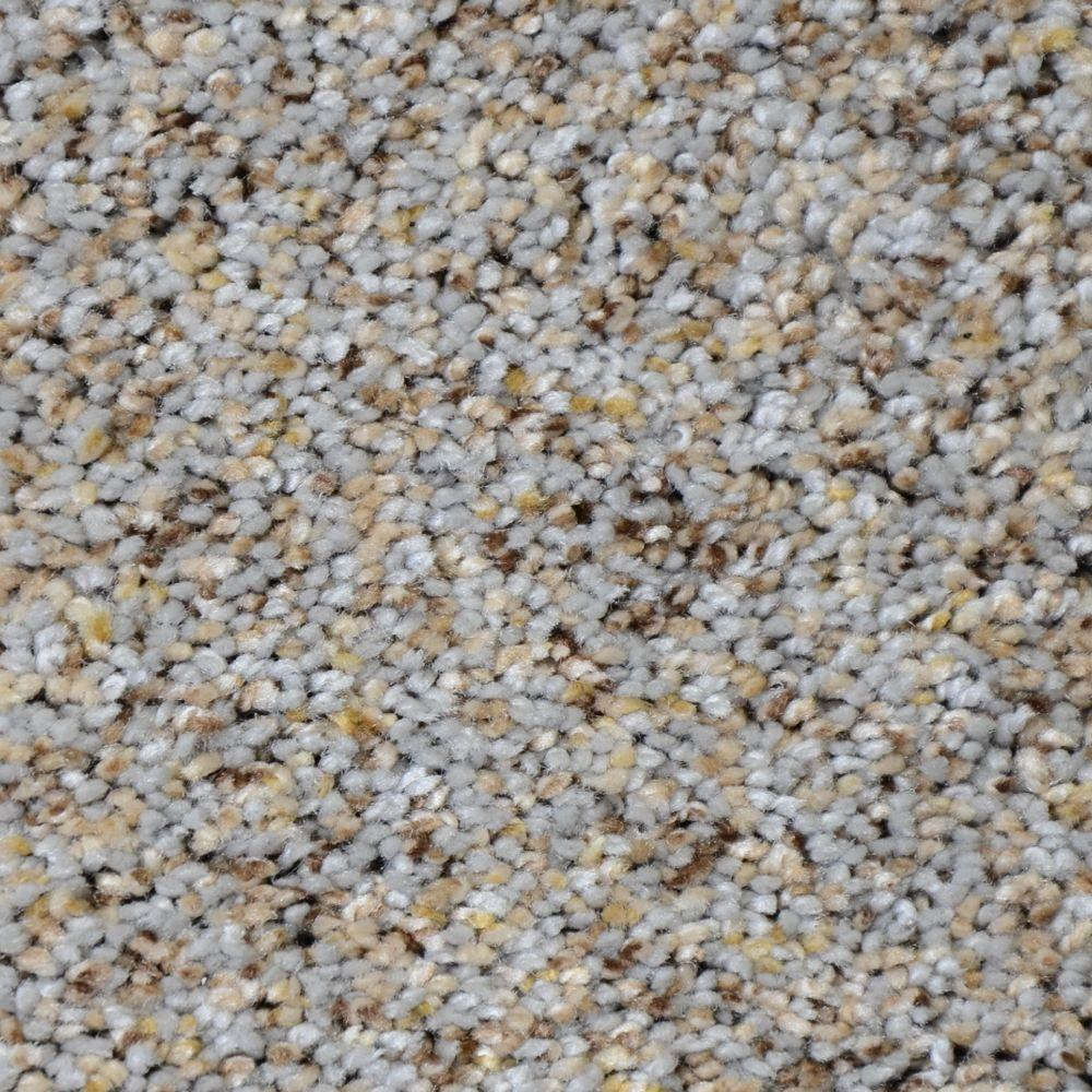 Nevada - Color Colfax Texture 12 ft. Carpet
