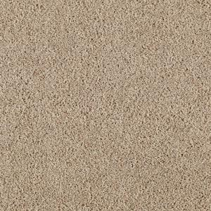 Trafficmaster Lucky Ticket Color Nomad Texture 12 Ft Carpet 0275d 21 The Home Depot