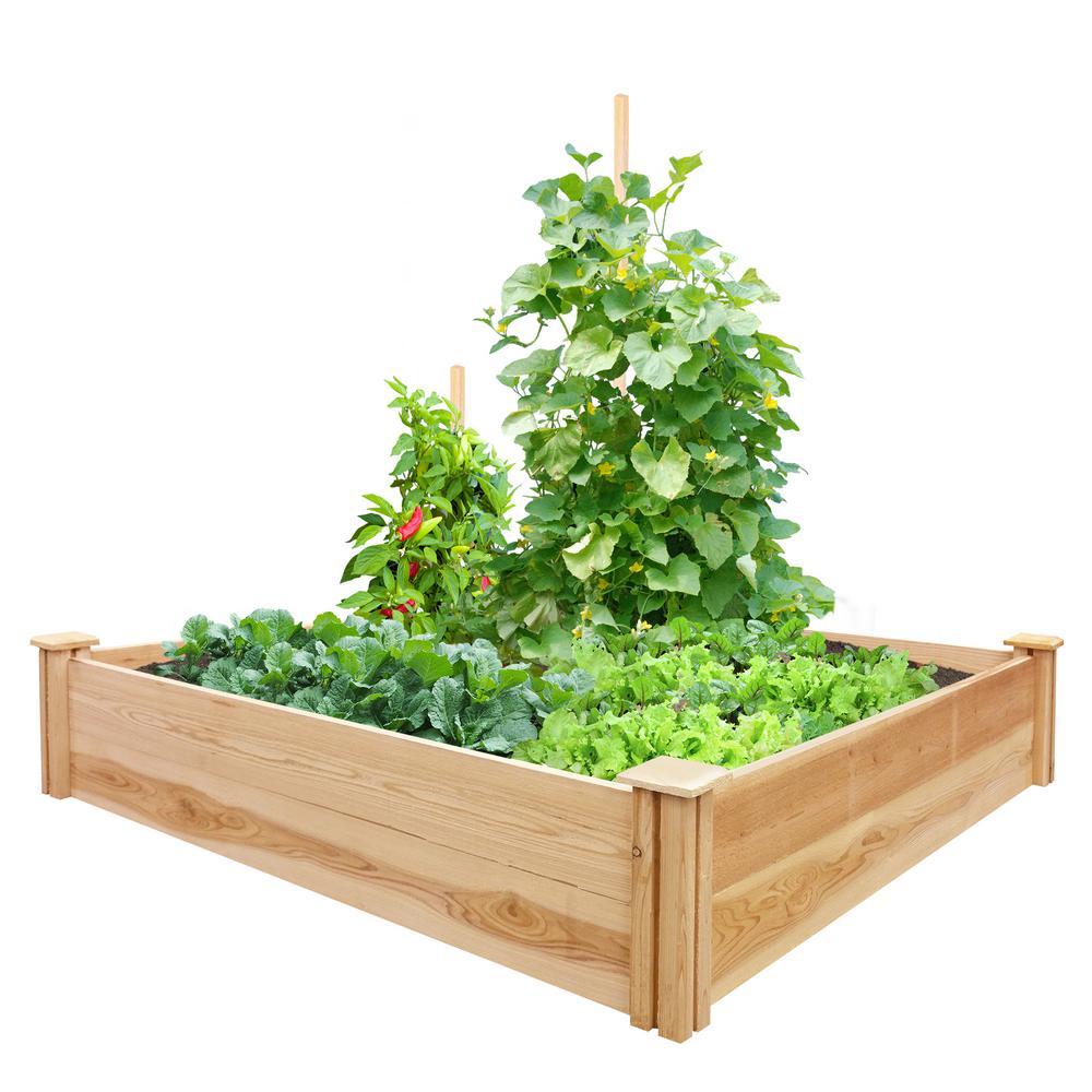 48 in. L x 48 in. W x 11 in. H Cedar Raised Garden Bed