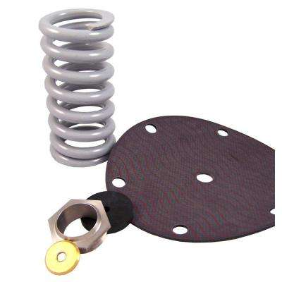 2 in. E-41 Pressure Regulating Valve Repair Kit