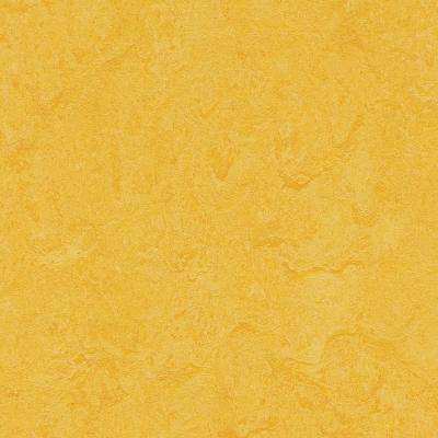 Lemon Zest 9.8 mm Thick x 11.81 in. Wide x 11.81 in. Length Laminate Flooring (6.78 sq. ft. / case)