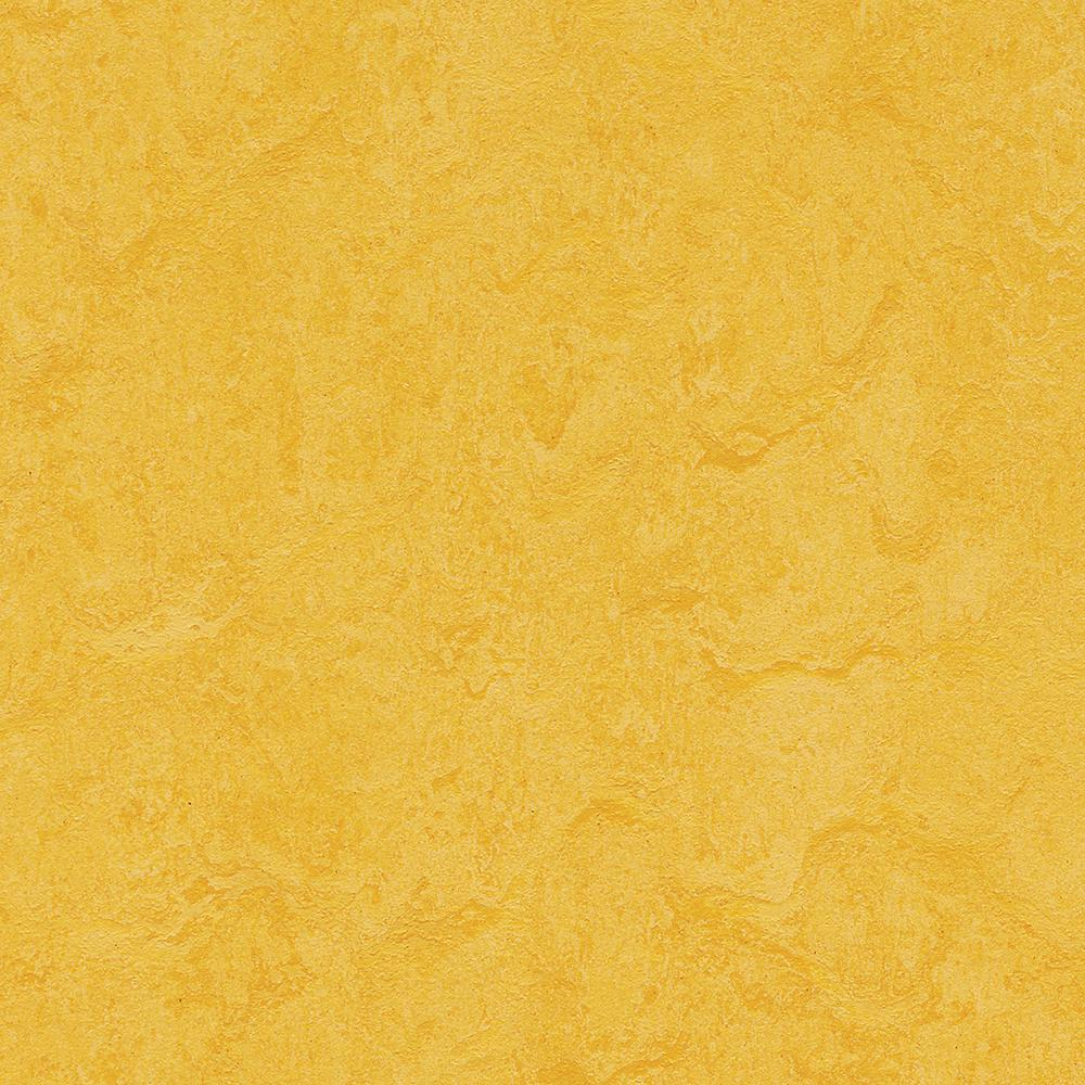 Lemon Zest 9.8 mm Thick x 11.81 in. Wide x 11.81