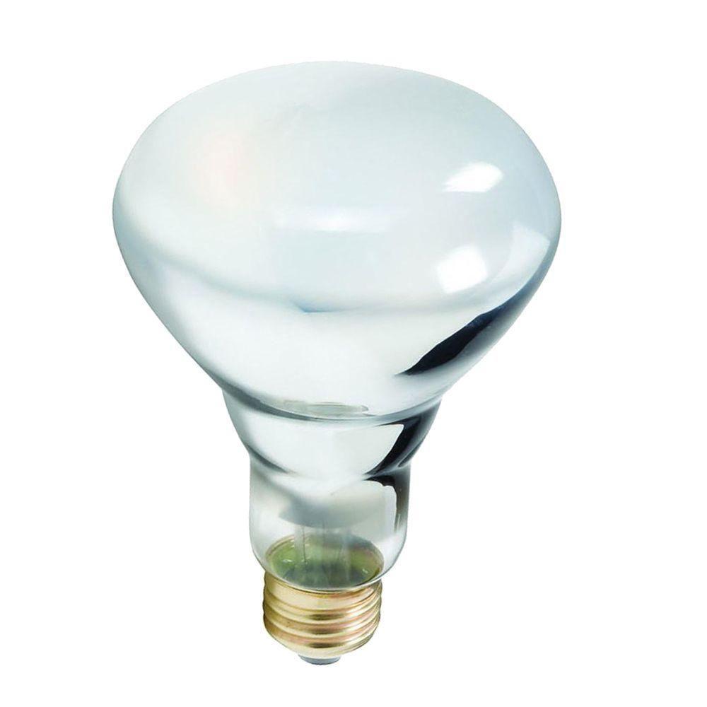 Philips 40-Watt Halogen BR30 Flood Frosted Soft White (2700K) Light Bulb (12-Pack)