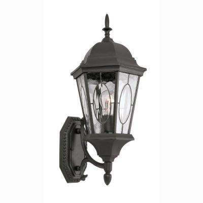 Cameo 1-Light Outdoor Black Coach Lantern with Water Glass