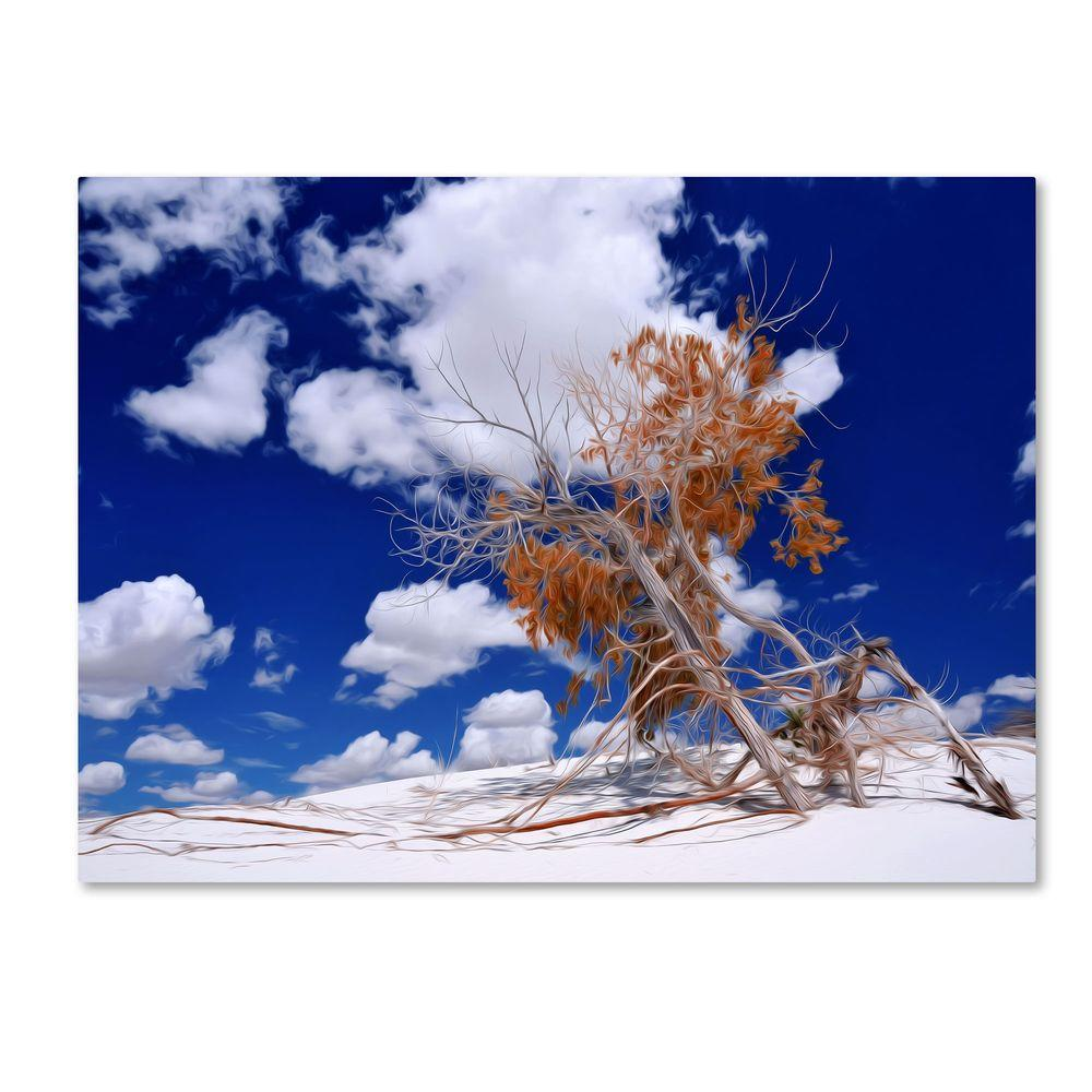 16 in. x 24 in. Burn Tree Canvas Art