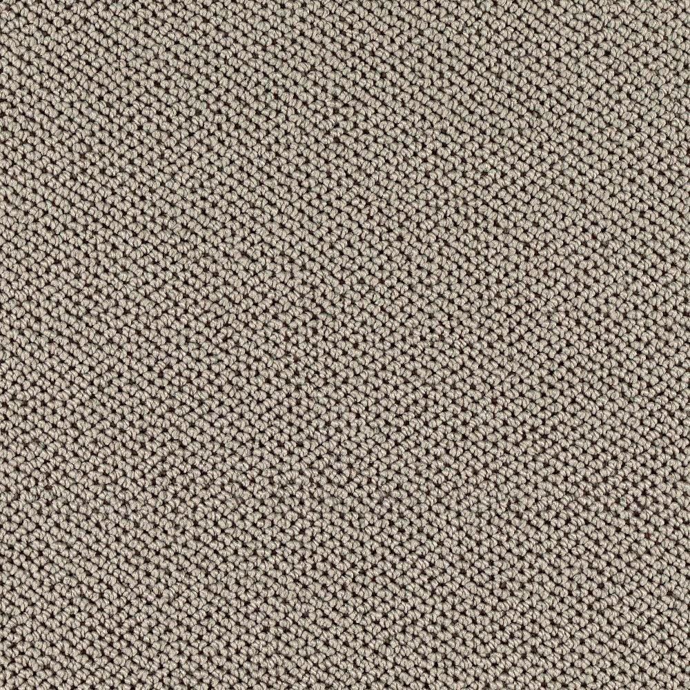 Deliverable - Color Amazon Loop 12 ft. Carpet