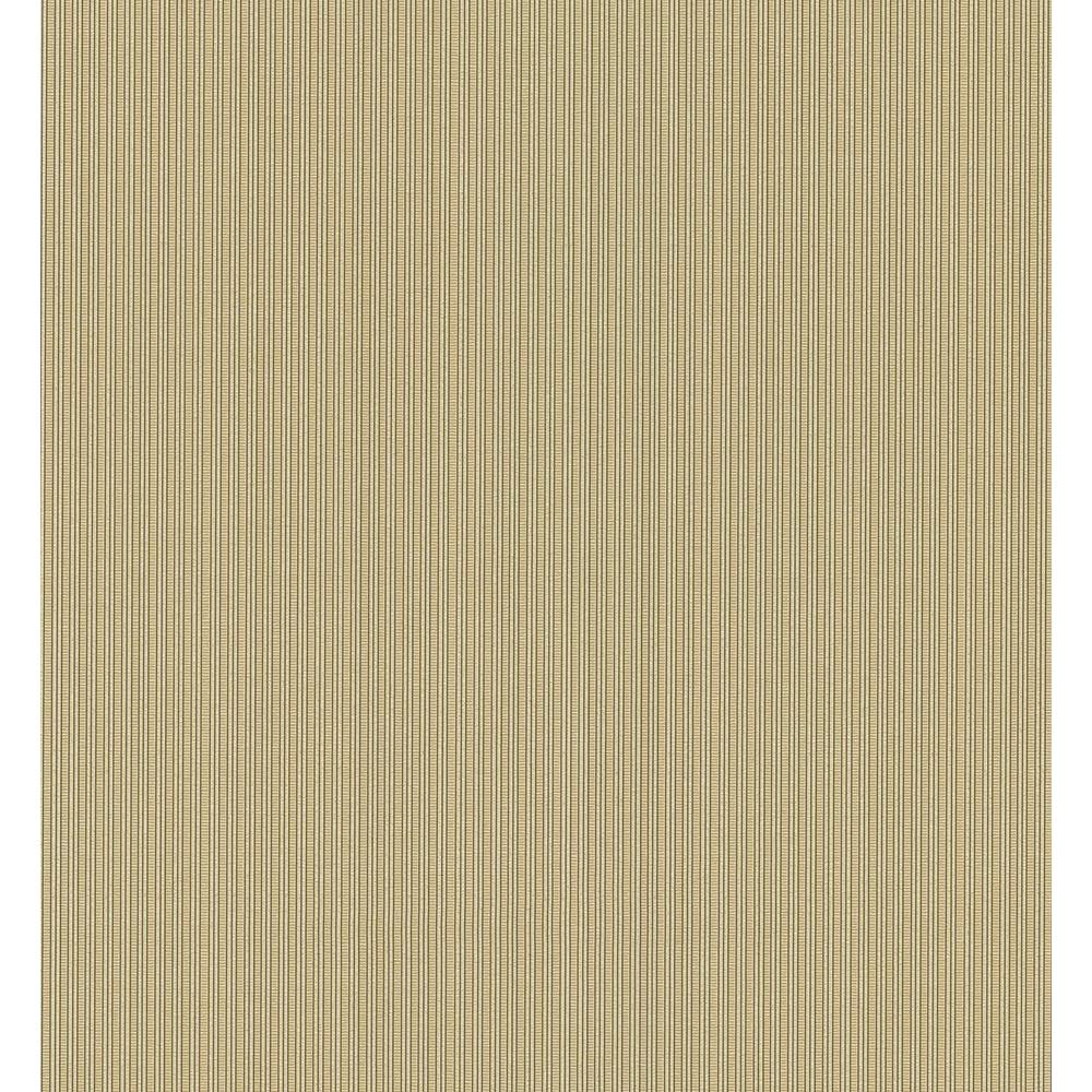 National Geographic 56 sq. ft. Pin Stripe Wallpaper