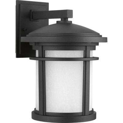 Wish Collection 1-Light Outdoor 9 Inch Black LED Wall Lantern