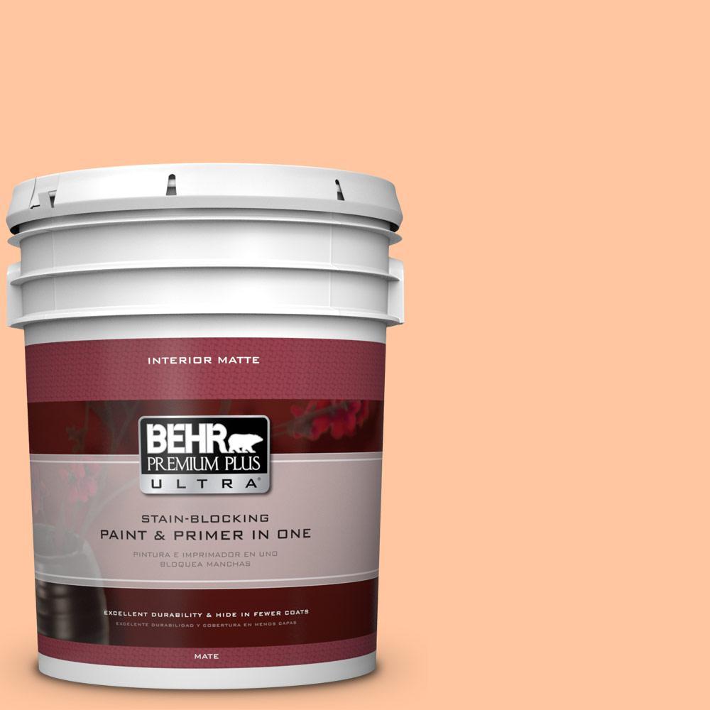 5 gal. #260B-4 Orange Sherbet Flat/Matte Interior Paint