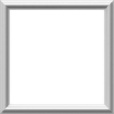 20 in. W x 20 in. H x 1/2 in. P Ashford Molded Classic Wainscot Wall Panel
