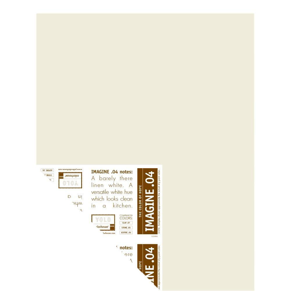 YOLO Colorhouse 12 in. x 16 in. Imagine .04 Pre-Painted Big Chip Sample