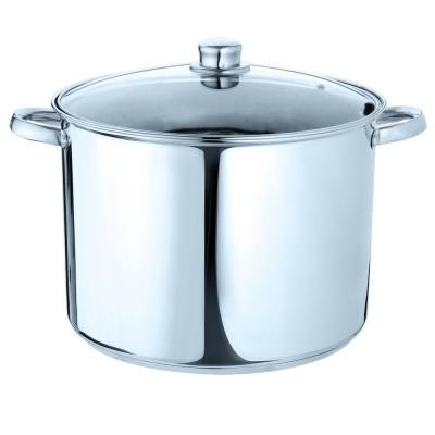Pure Intentions 16 qt. Stainless Steel Stock Pot in Polished Stainless Steel with Glass Lid
