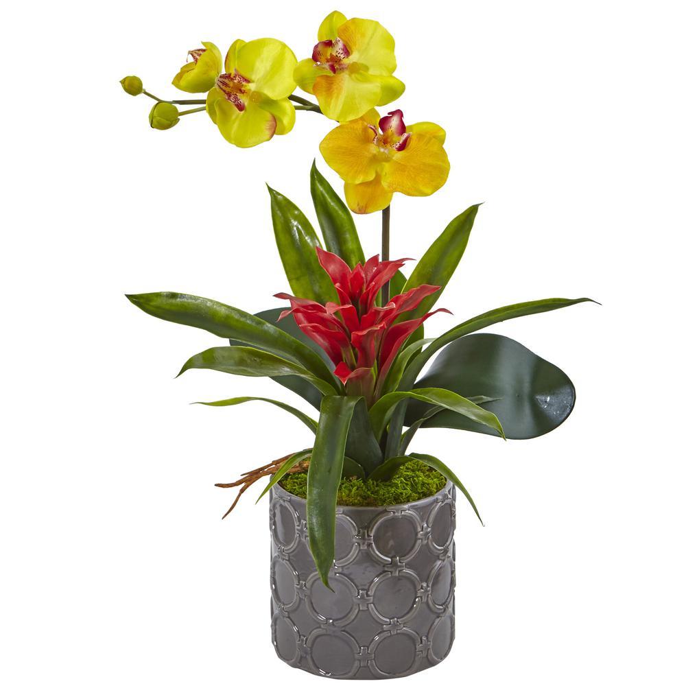 Mini Phalaenopsis Orchid and Bromeliad Silk Arrangement in Yellow