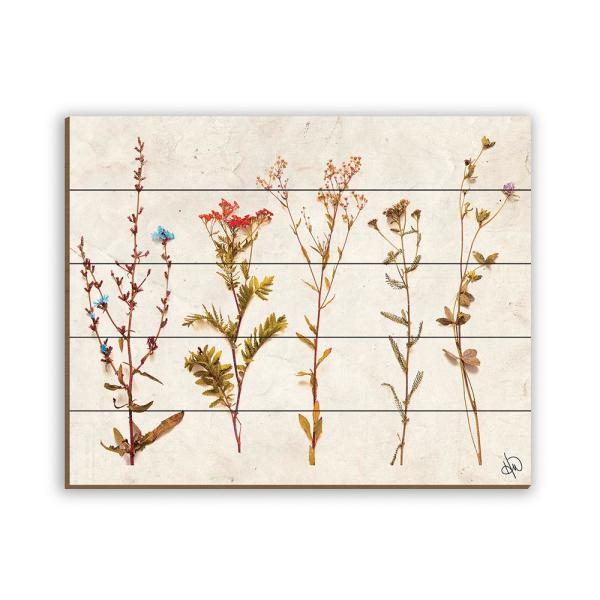 20 In X 24 In 4s Dry Brown Flowers Planked Wood Wall Art Print