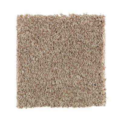 Carpet Sample - Gemini I Color - Tudor Brown Texture 8 in. x 8 in.