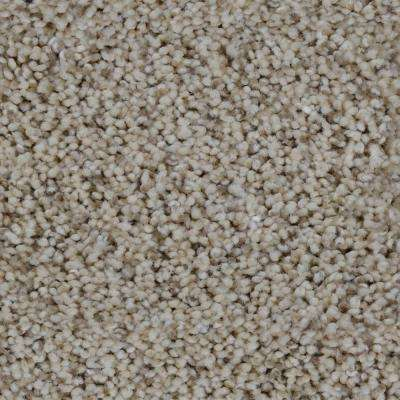 Trendy Threads I - Color Lakeview Texture 12 ft. Carpet