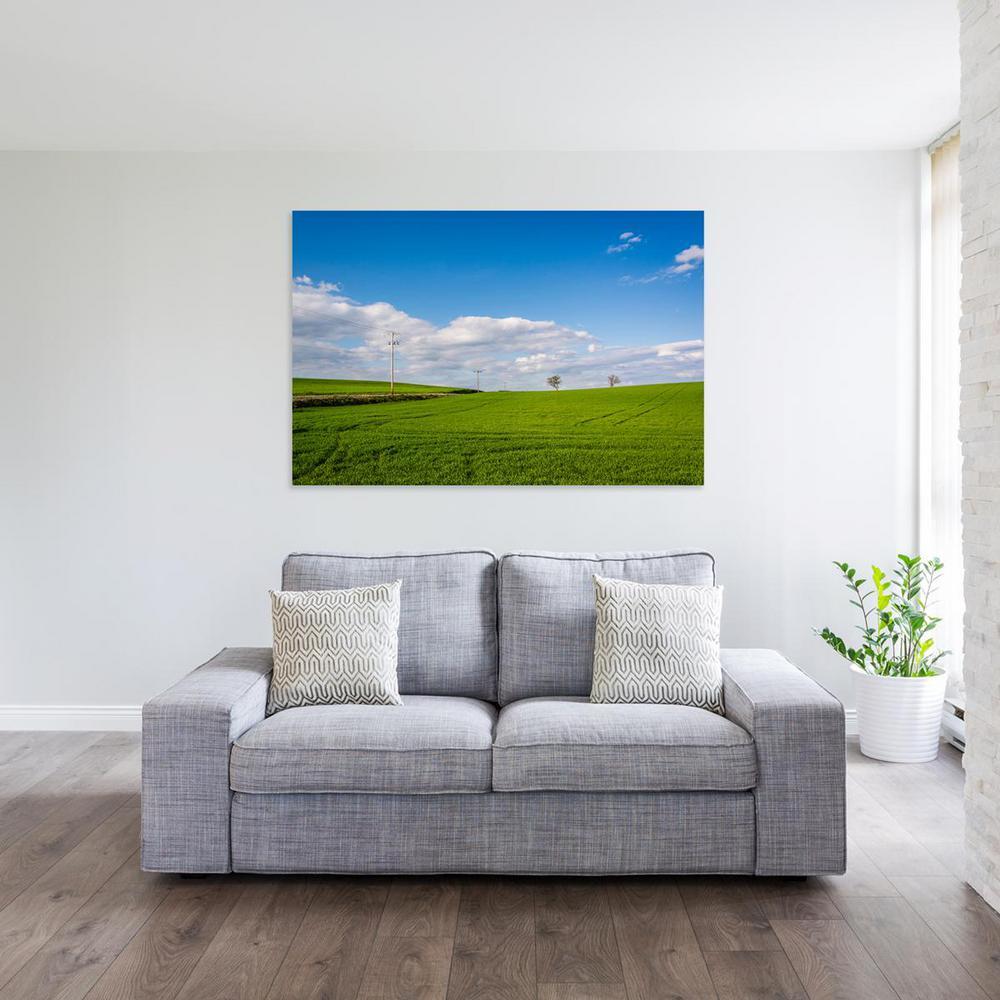12 in. x 18 in. ''A grassy field in rural Pennsylvania''