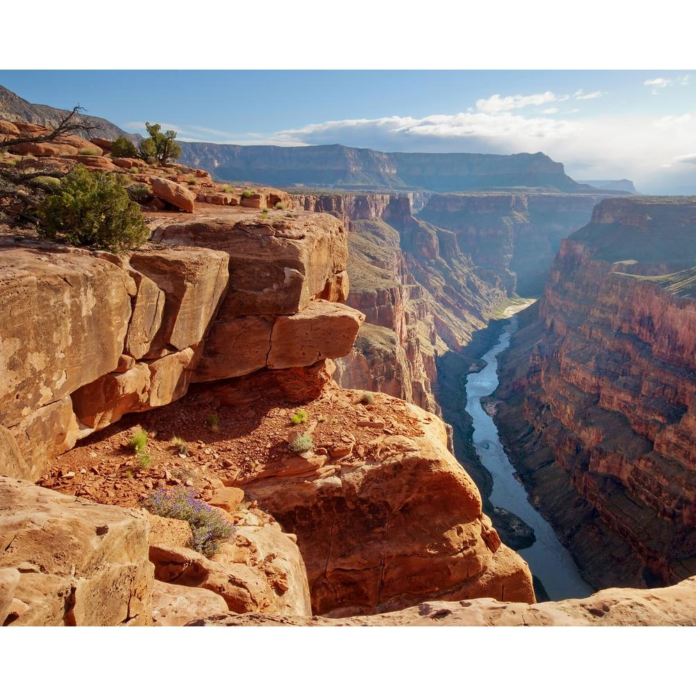 Grand Canyon Wall Mural WR50567 The Home Depot