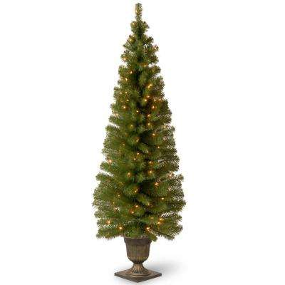 6 ft. Montclair Spruce Entrance Artificial Christmas Tree with Clear Lights