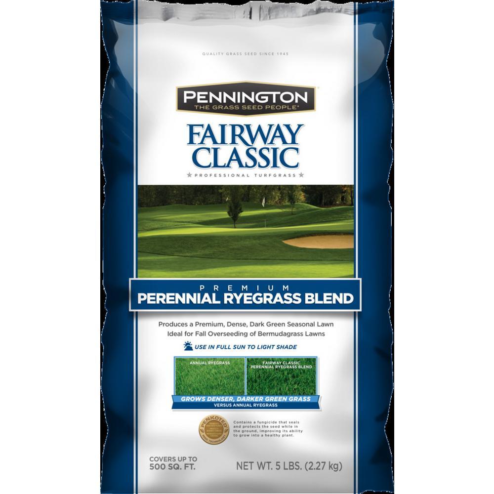 5 lb. Fairway Supreme Perennial Ryegrass Blend