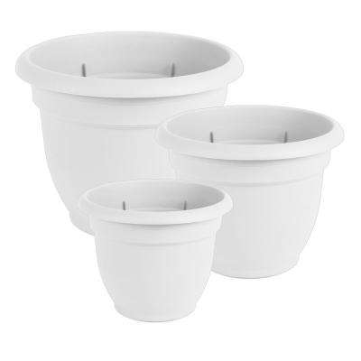 Bloem Self Watering Plant Pots Planters The Home Depot