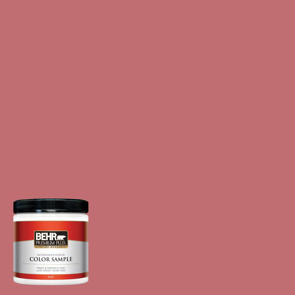 BEHR Premium Plus Home Decorators Collection 8 oz. #HDC-SP14-8 Art ...