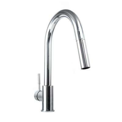 Gemini Single-Handle Pull-Down Sprayer Kitchen Faucet in Chrome
