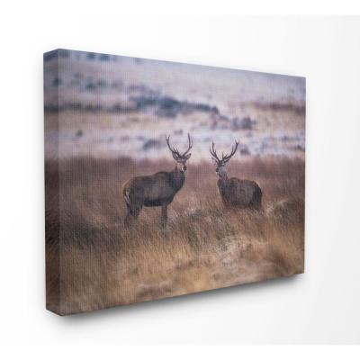 "24 in. x 30 in. ""Deer Couple Family Landscape Photo"" by Villager Jim Canvas Wall Art"
