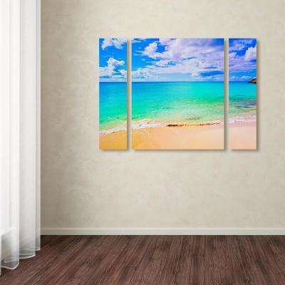 """30 in. x 41 in. """"Maho Beach"""" by Preston Printed Canvas Wall Art"""