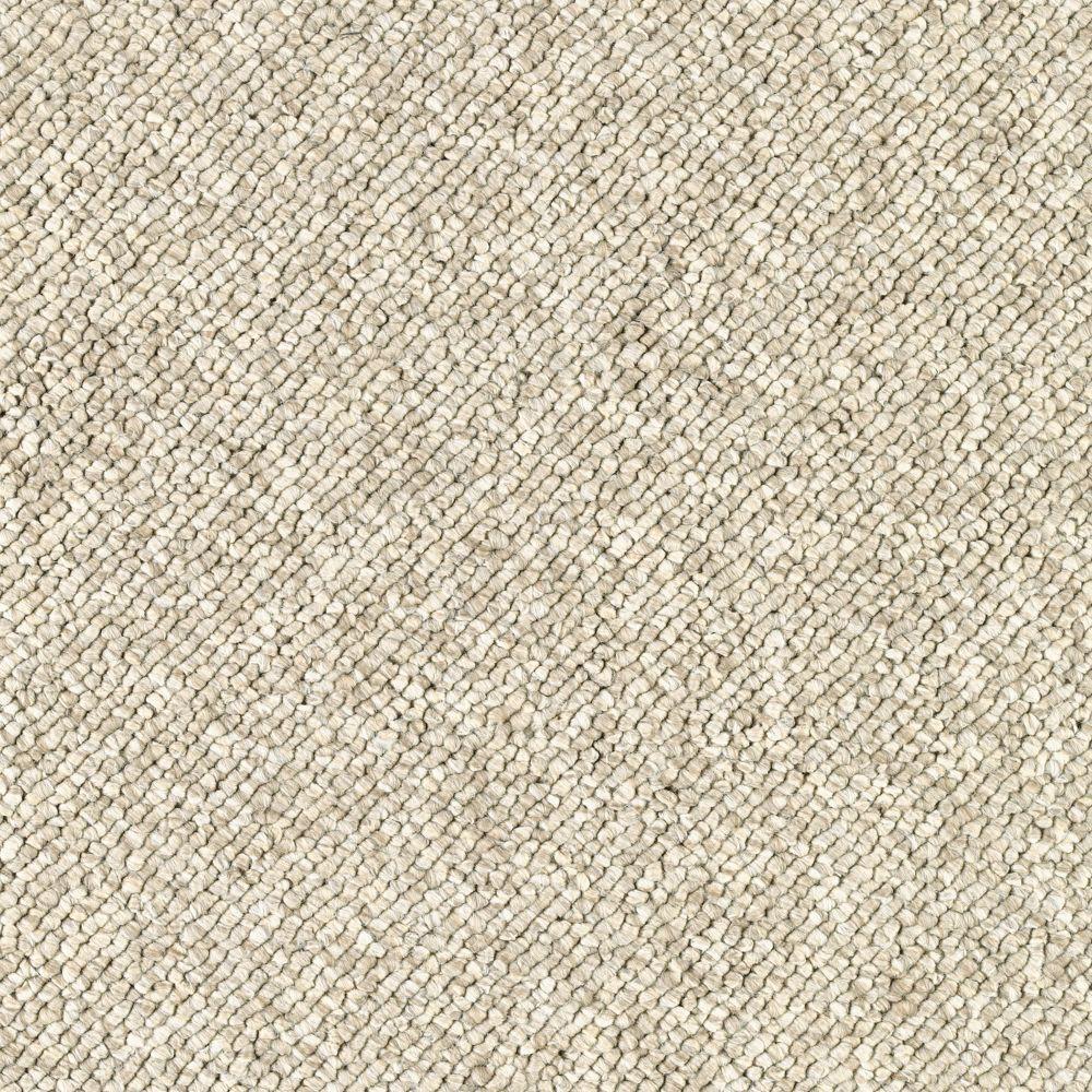 null Qualifier - Color Artist's Canvas Loop 12 ft. Carpet