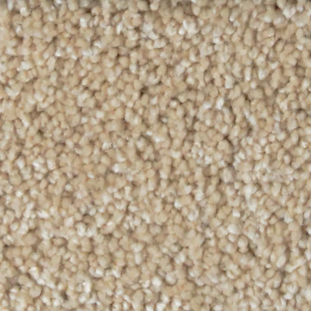 Stargazer - Color Daydreamer Texture 12 ft. Carpet