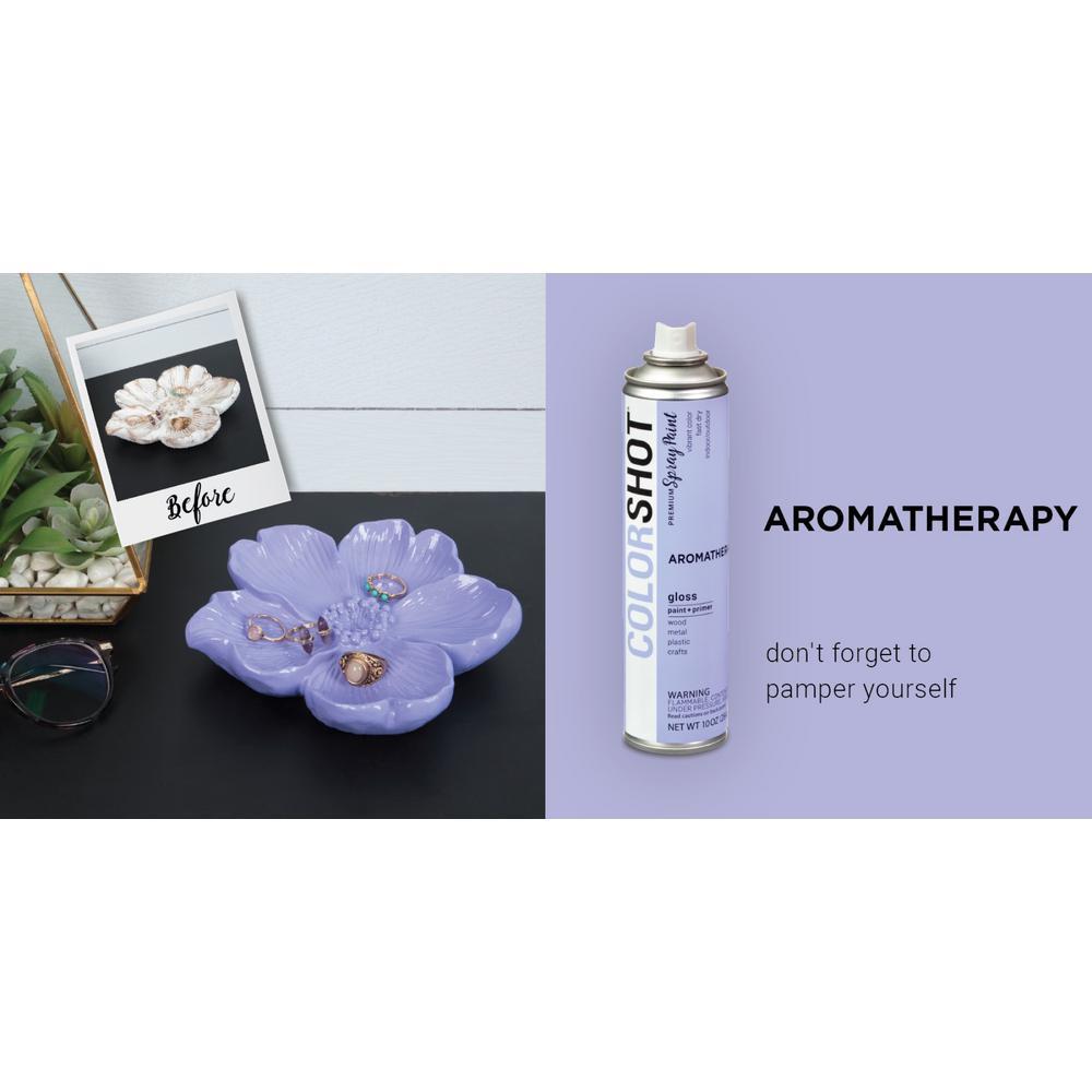 Colorshot 10 Oz Gloss Aromatherapy Lavender General Purpose Aerosol Spray Paint