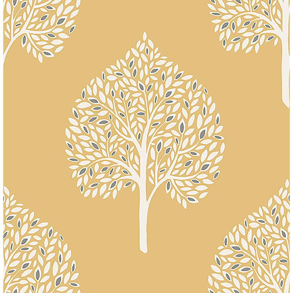 A Street Grove Mustard Tree Wallpaper 2702 22708 The